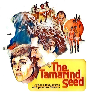 The Tamarind Seed - artwork by Mister G